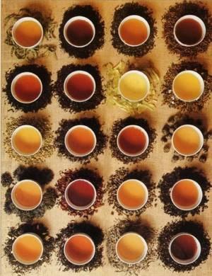 Польза и вред различных чаев для похудения