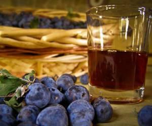 Простой и понятный рецепт вина из терна, который можно осуществить в домашних условиях