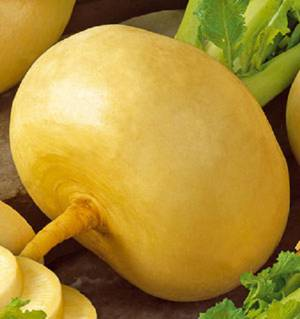 Чем полезна репа и можно ли ее есть для похудения