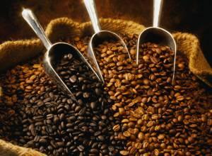 Как выбрать хороший кофе и как его правильно хранить