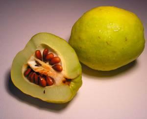 Калорийность, химический состав и лечебные свойства айвы