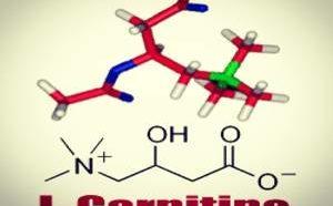 Отзывы и анализ врача-эксперта препарата для похудения - L-карнитин
