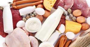 В каких продуктах питания содержиться протеин