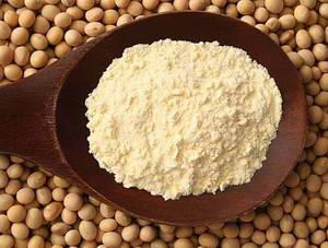 Каковы плюсы и минусы употребления соевого протеина
