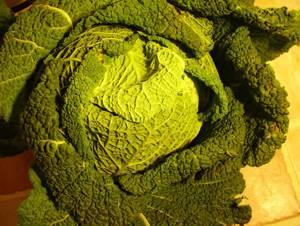 Что интересного и полезного можно приготовить из савойской капусты