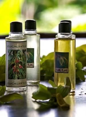 Эфирное масло иланг-иланга и эвкалипта, их полезные свойства и сферы применения