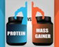 Что лучше для набора мышечной массы - гейнер или протеин