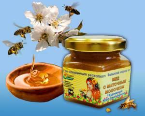 Как выбрать хороший мед с маточным молочком и как можно отличить подделку