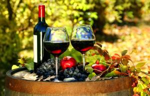 Польза красного вина для здоровья
