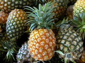 Как правильно выбрать спелый ананас и как его нужно хранить в домашних условиях