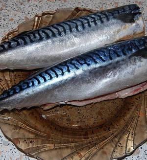 Полезные свойства, пищевая ценность и калорийность скумбрии