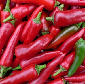 Польза и вред красного острого перца для здоровья человека