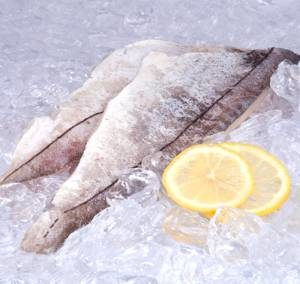 Рыба пикша, ее польза и вред для здоровья организма