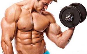 Какие упражнения являются базовыми на бицепс