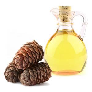 Полезные, лечебные, целебные свойства и возможные противопоказания масла кедровых орехов