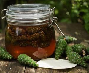 Чем полезно варенье из сосновых шишек и сколько в нем калорий