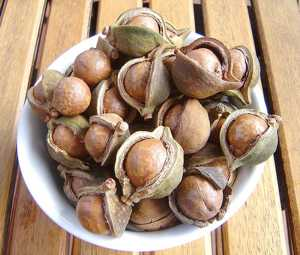 Как масло австралийского ореха (макадамии) применяется для похудения