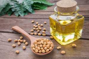 Полезные и лечебные свойства и противопоказания соевого масла