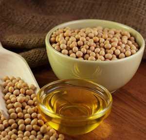 Польза и возможный вред соевого масла
