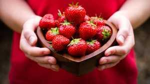 Как правильно выбирать и хранить клубнику, ее калорийность, пищевая ценность и БЖУ
