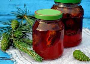 Как приготовить вкусное варенье из почек сосны (рецепт с фото)