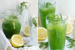 Как приготовить лимонад с тархуном в домашних условиях