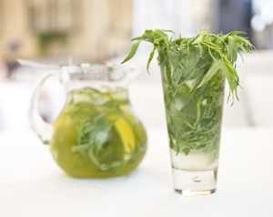Как приготовить чай с тархуном в домашних условиях