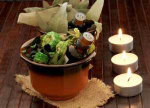 Полезные и лечебные свойства, особенности применения эфирного масла эвкалипта