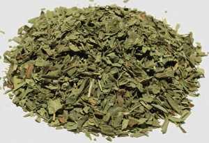 Чем полезен тархун (эстрагон) для здоровья организма человека