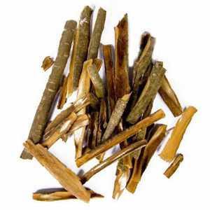 Полезные, лечебные свойства и противопоказания коры крушины