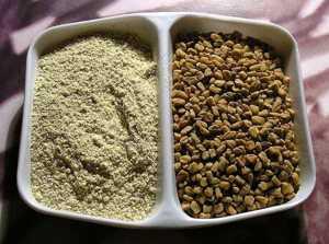 Применение пажитника в кулинарии и для похудения