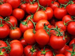 Как приготовить запеченные в духовке фаршированные помидоры