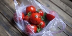Как сделать малосольные помидоры быстрого приготовления с чесноком