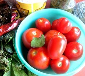 Как приготовить малосольные помидоры быстрого приготовления в пакете по основному рецепту