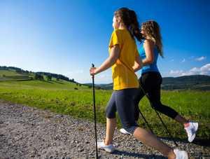 Ориентировочные цены на палки для скандинавской ходьбы