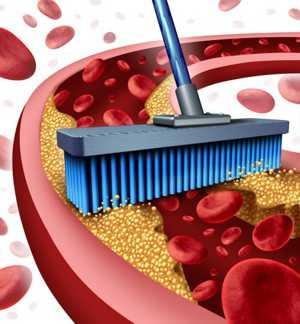 Таблицы и списки продуктов, снижающих холестерин и очищающих сосуды