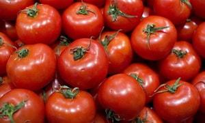 Как правильно выбрать ингредиенты для томатного супа-пюре, приготовленного по рецепту с фото