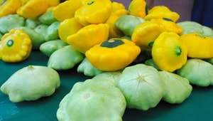 Какие овощи лучше выбрать для того, чтобы приготовить фаршированные с фаршем патиссоны, запеченные в духовке