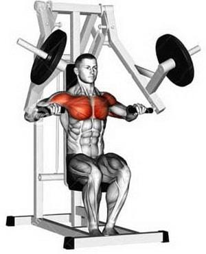 мышцы работающие при жиме в хаммере