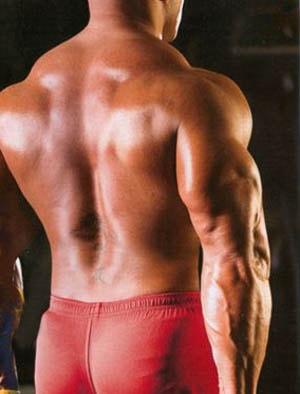 накаченная спина спортсмена