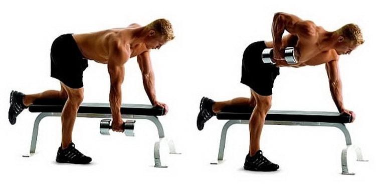 упражнение тяга гантели упором на скамью
