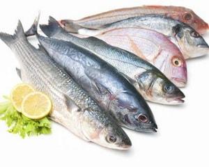 как выбрать рыбу для запеканки