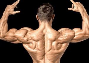 тренированные плечи