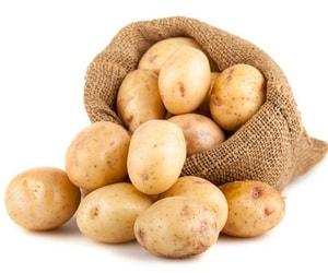какой картофель лучше выбрать