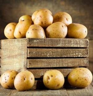 польза и вред картофеля на организм