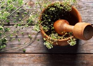 Листья пастушьей сумки насыщены питательными, очень полезными веществами
