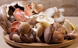 грибы калорийность на 100 грамм