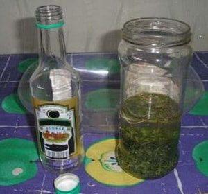 настойка чистотела на водке рецепт и применение
